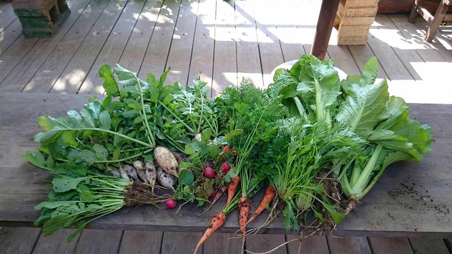 幸福農莊的活動包括想用自產天然季節料理,滋味豐盈。(圖/幸福農莊FB)